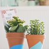 DIY: dip dye bloempotjes
