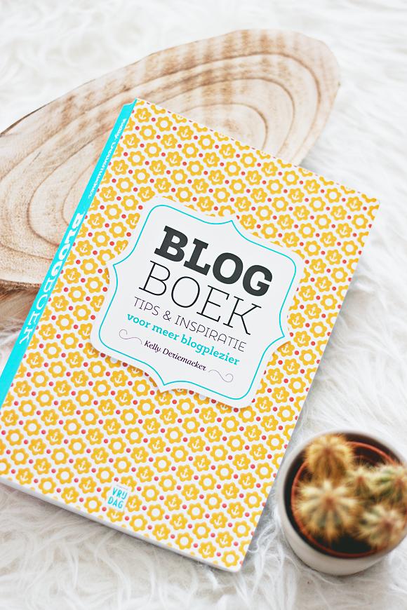 Review: het Blog Boek