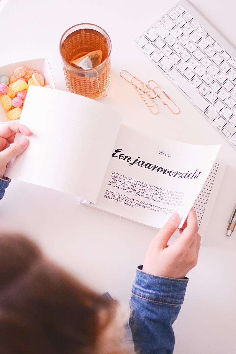 Het Blog Like A Boss Boek
