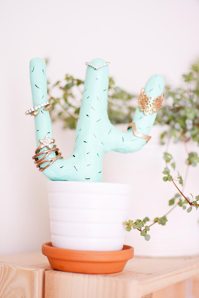 Een cactus voor je ringen