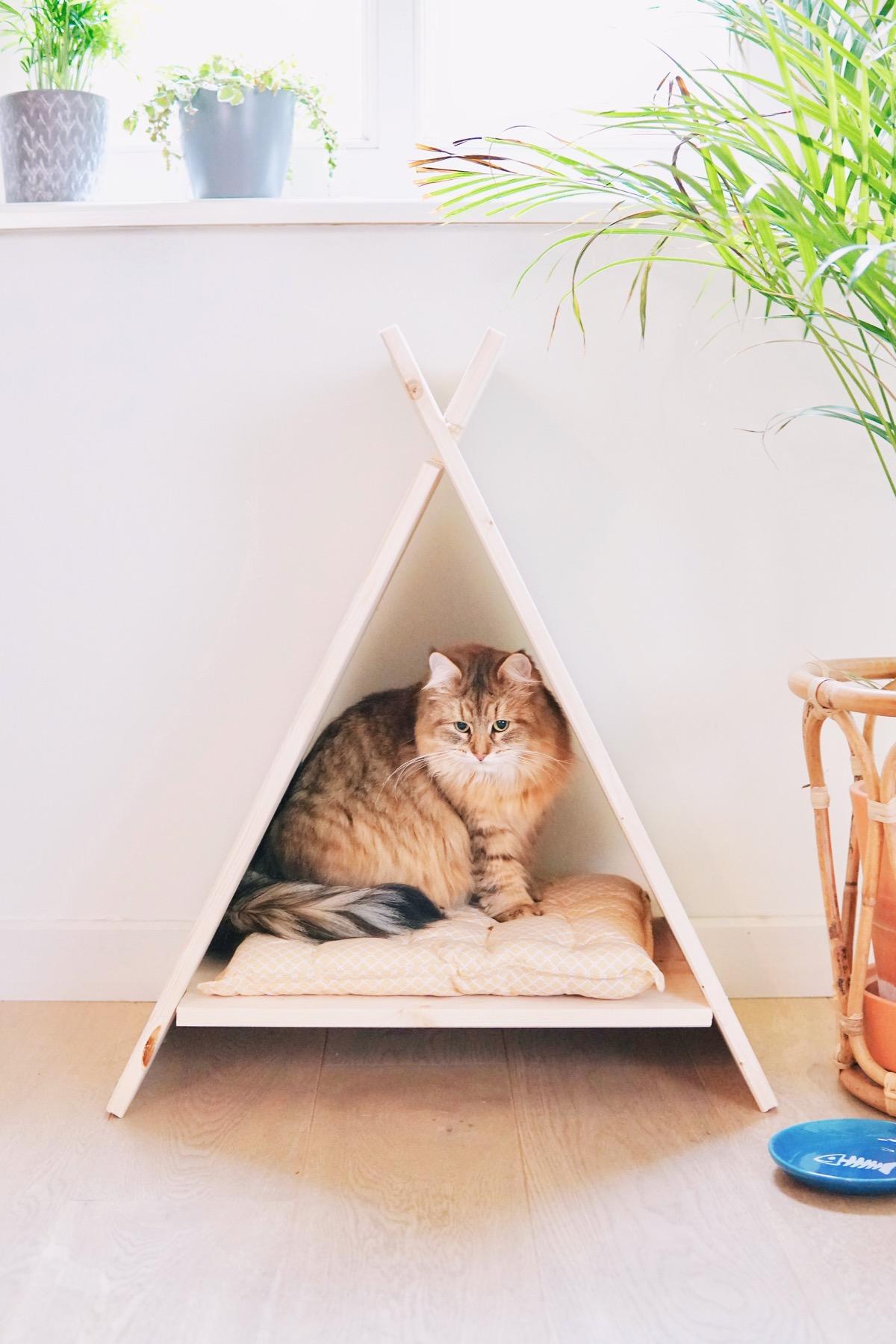 Maak zelf een tipi voor je kat!